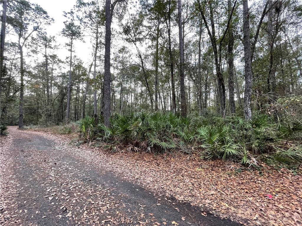 15 Cotton Field Road Brunswick, GA 31523