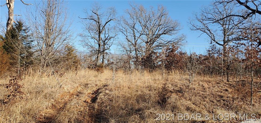 Y Road Linn Creek, MO 65065