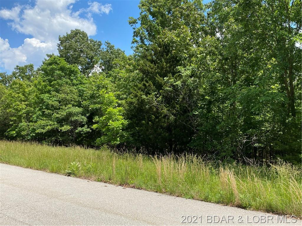 Osage Avenue Laurie, MO 65037