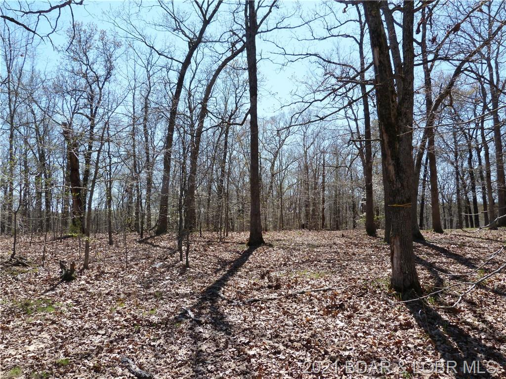Partridge Drive Climax Springs, MO 65324