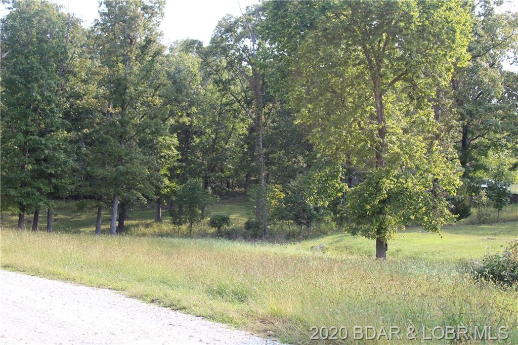 Lot 17 Mayerling Drive Gravois Mills, MO 65037