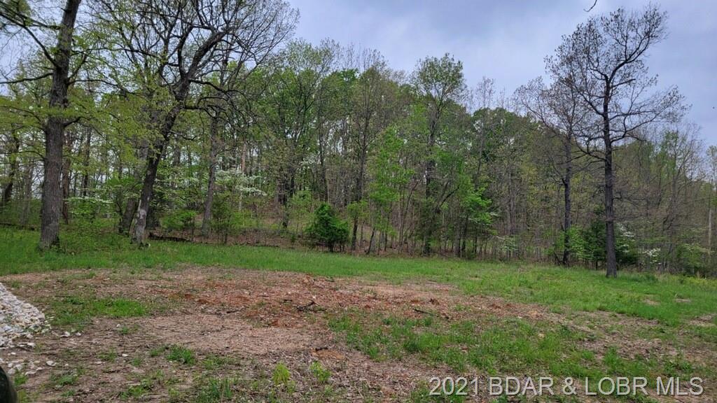 TBD Pleasant Hollow Lane Linn Creek, MO 65052