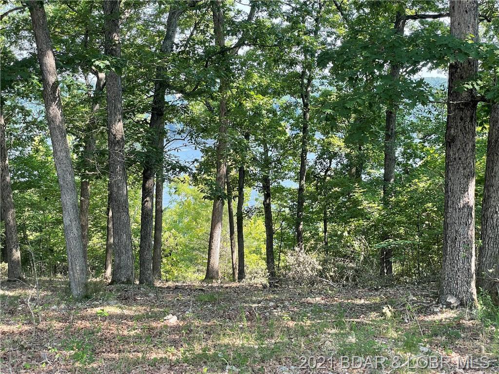 Woodland Point Linn Creek, MO 65052