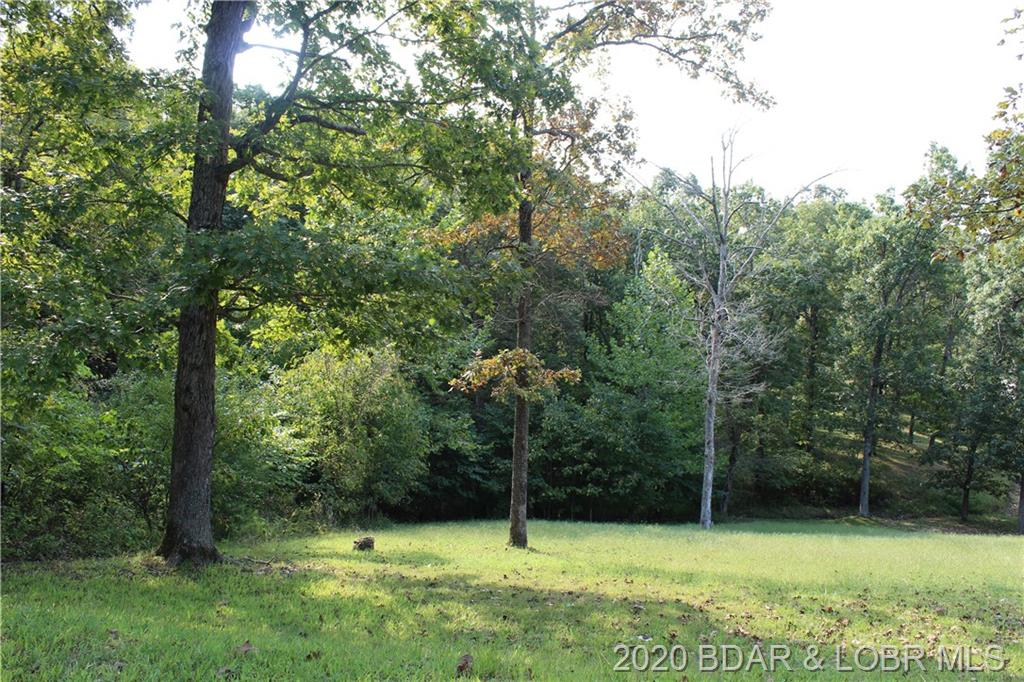 Lot 20 Mayerling Drive Gravois Mills, MO 65037
