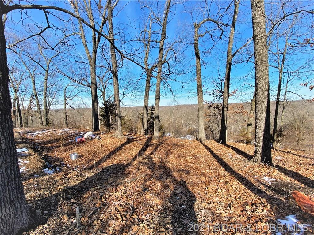 14 Frog Pond Road Rocky Mount, MO 65072
