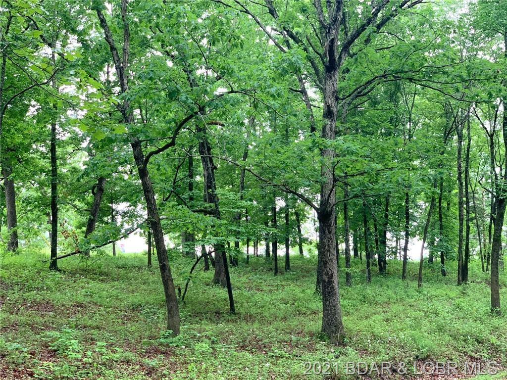 Lots 61 & Sunset Shores Ln Climax Springs, MO 65324