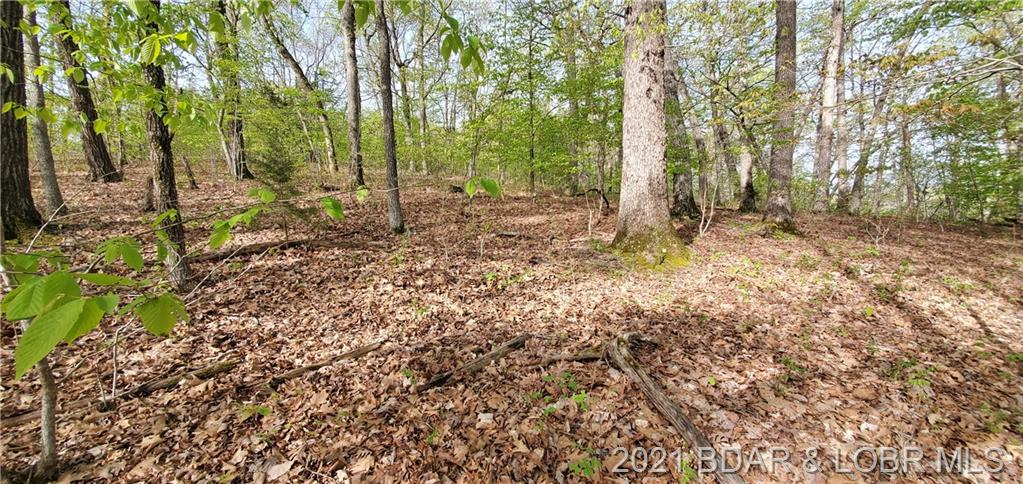 Lots 17 & Admirals Point Climax Springs, MO 65324
