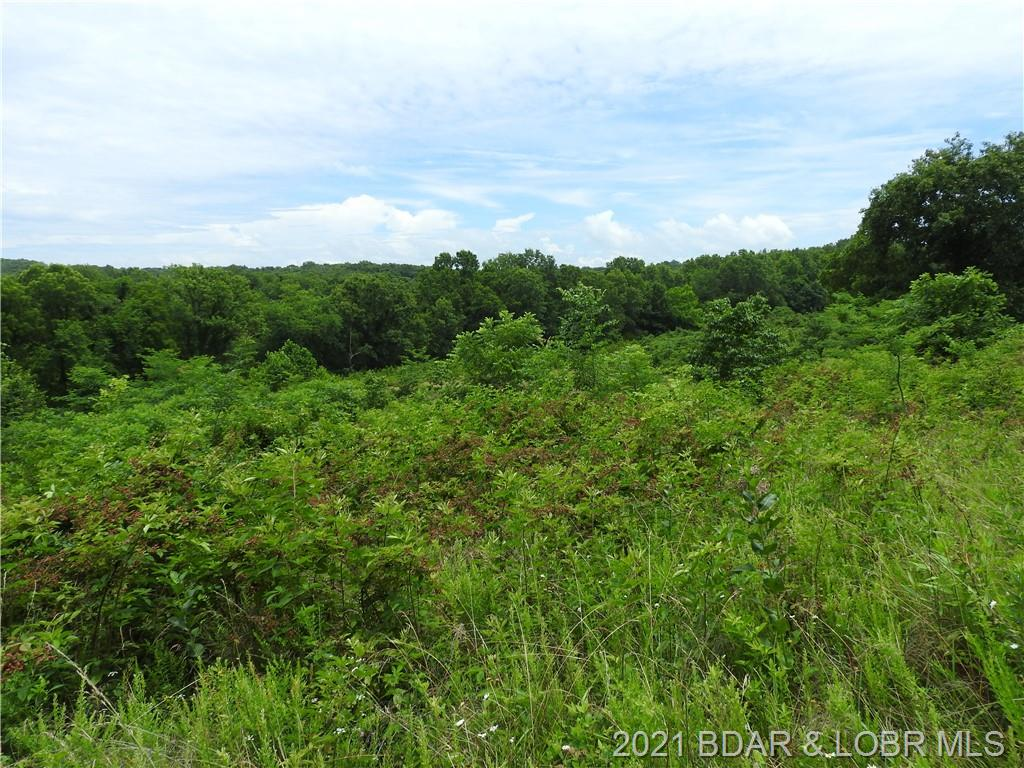 TBD Highway W 333 Acres Rocky Mount, MO 65072