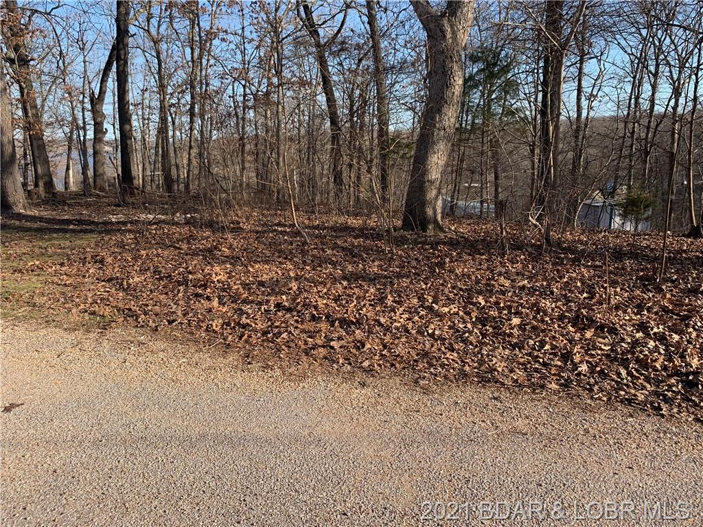 Lot 113 Highlands Drive Greenview, MO 65020