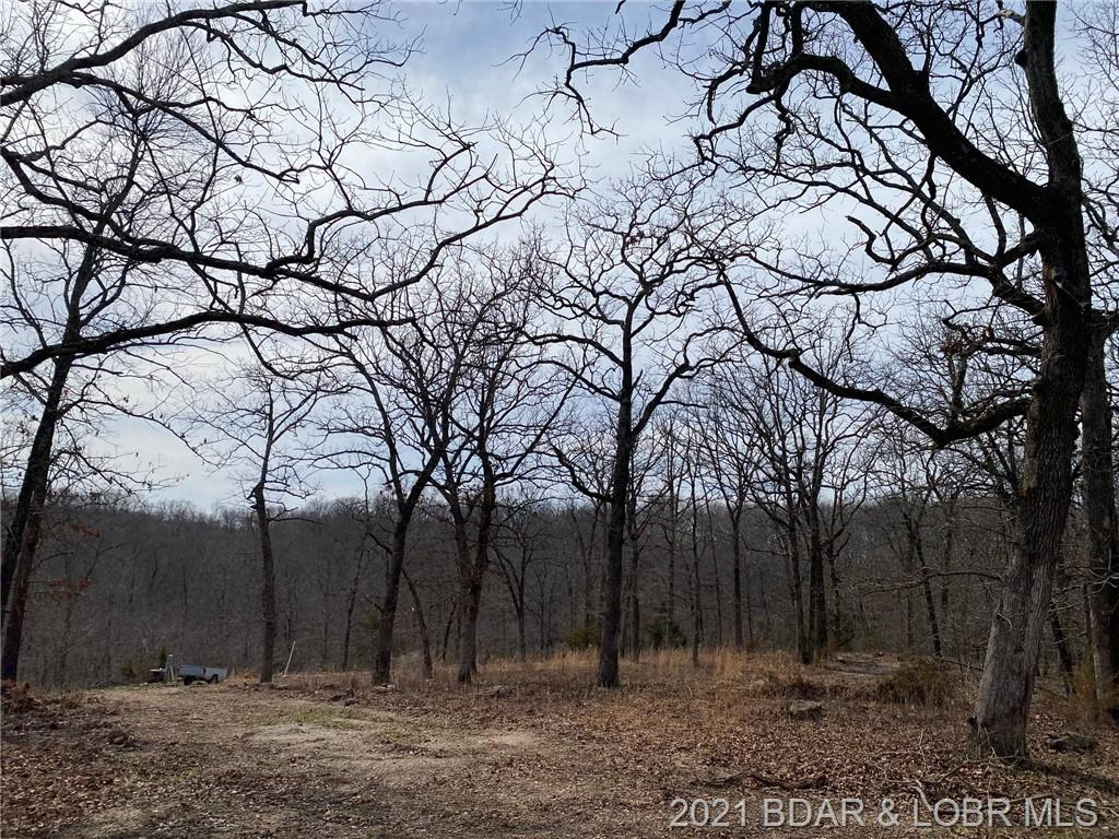 TBD Bumblebee Drive Linn Creek, MO 65052