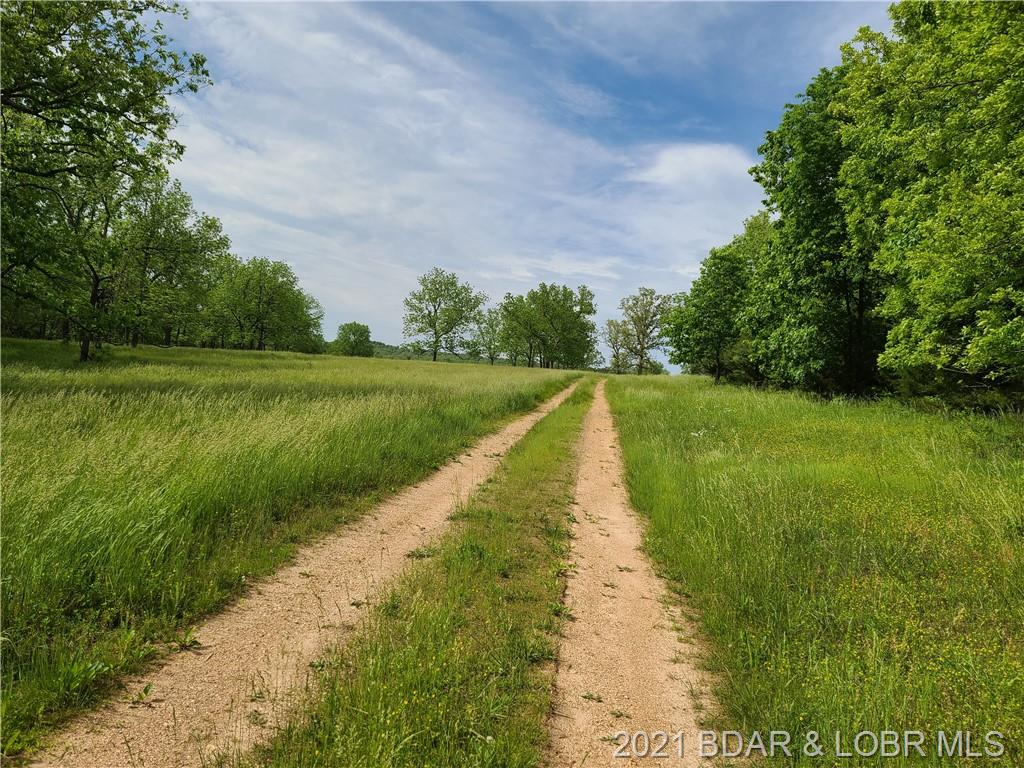 Tract #2 Rollins Creek Road Richland, MO 65556