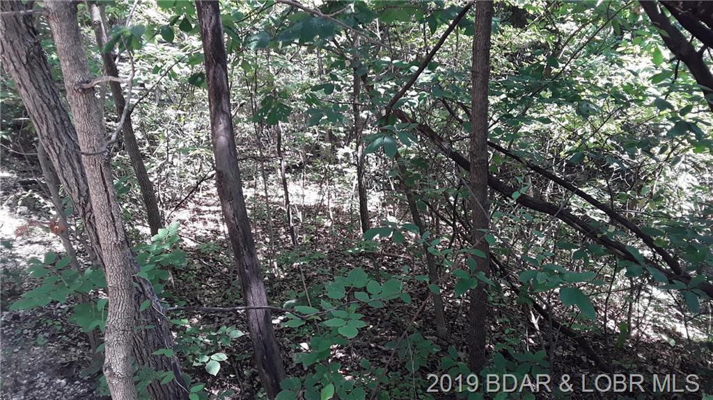 TBD Lot 4 Bittersweet Lane Rocky Mount, MO 65072