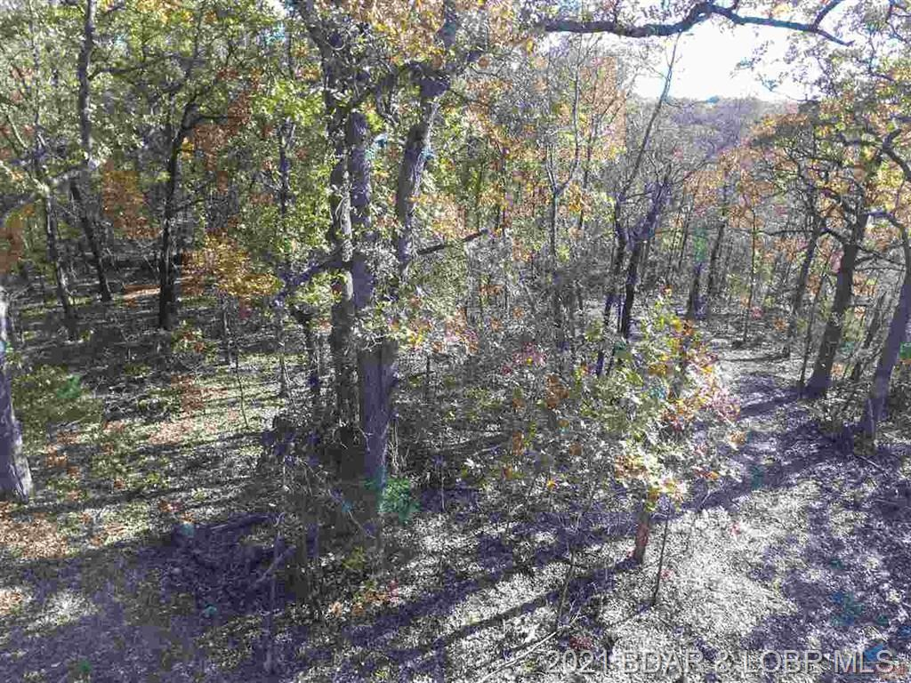90 Acres Elk Ridge Drive Warsaw, MO 65355