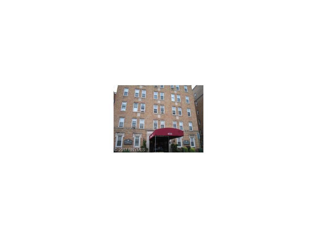 6735 Ridge Bld Boulevard #5F Brooklyn, NY 11220