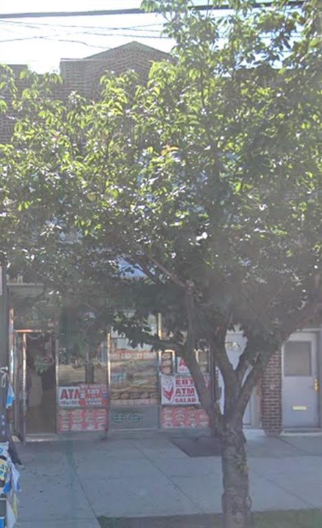 309 Saratoga Avenue Brooklyn, NY 11233