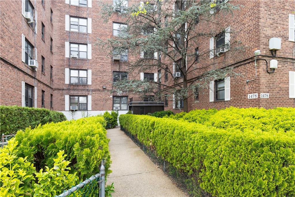1478 East 28 Street #1P Brooklyn, NY 11210