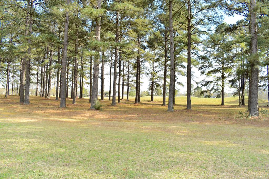 421 Pine Lake Ct. (l-14) Manning, SC 29102