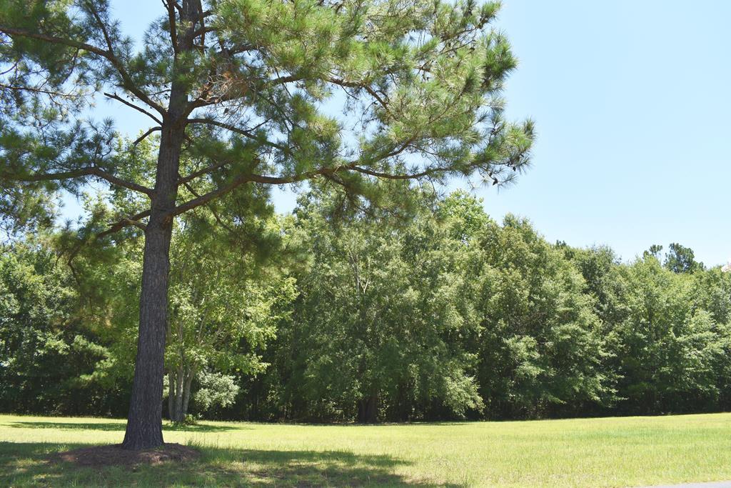 84 Ridge Lake Dr. (b-26) Manning, SC 29102