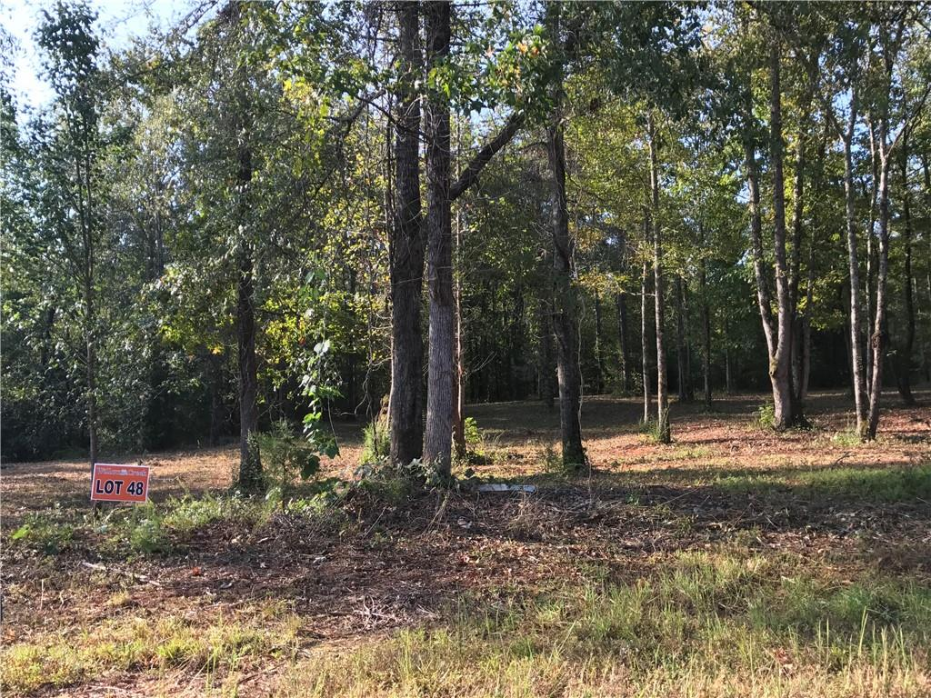 Twin View Drive Westminster, SC 29693