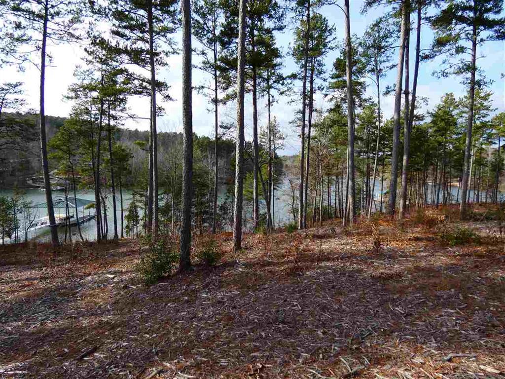 19  Timber Bay #19 Seneca, SC 29672
