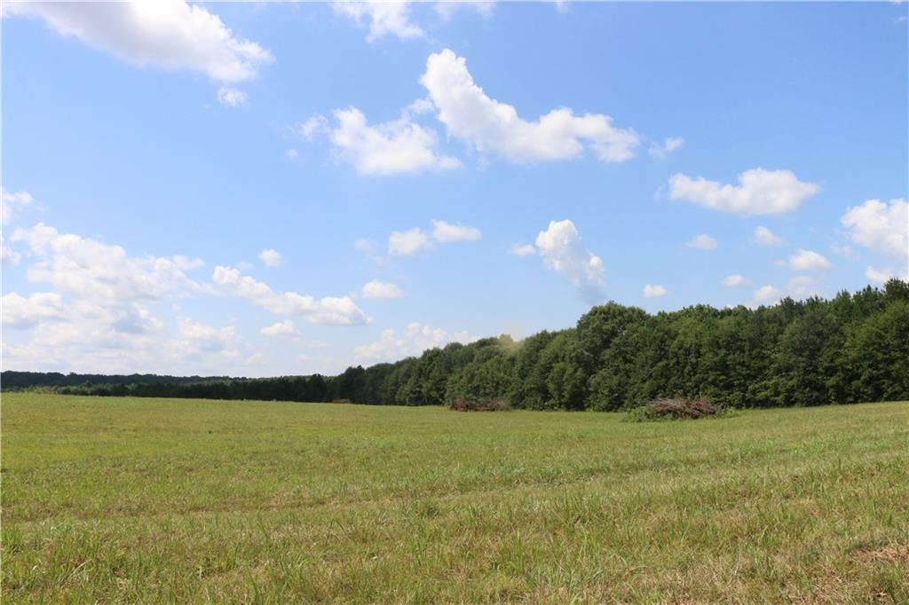 3105 Hwy 29 Highway #lot 16 - 11 Wood Forest L Anderson, SC 29625