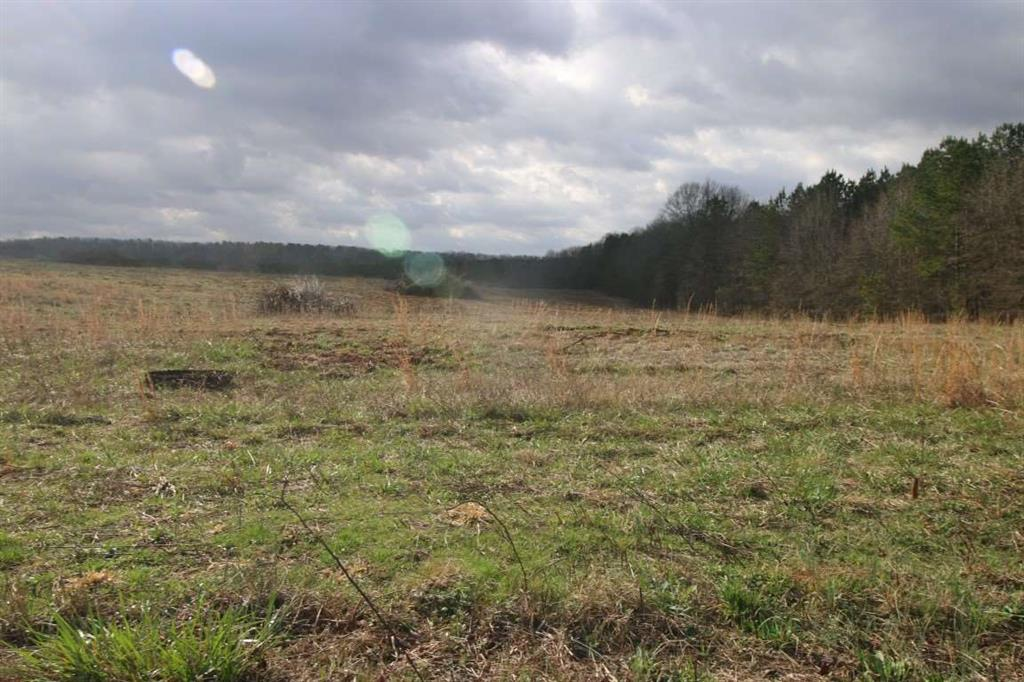 Lot 16 11 Woodforest Lane #3105 Hwy 29 S Anderson, SC 29625