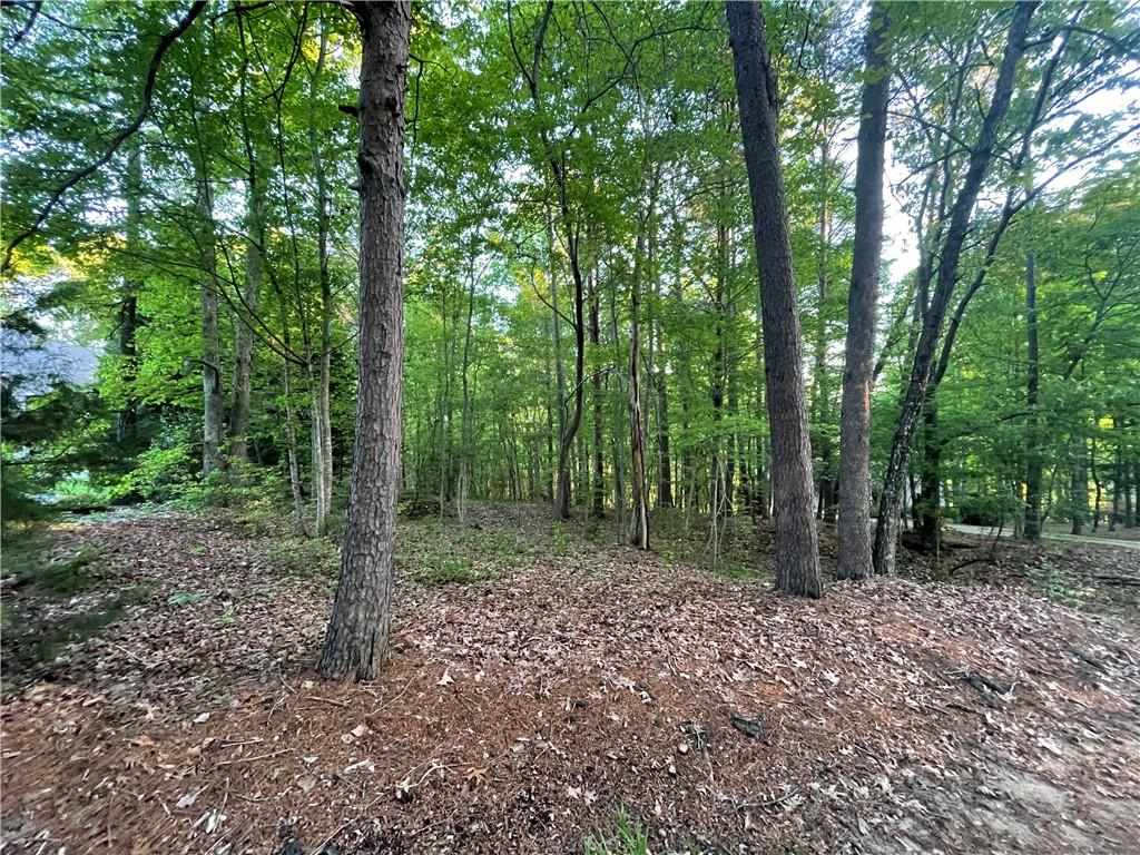 15 Eastern Point UNIT Lot 86 Salem, SC 29676