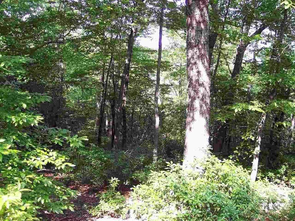 5 Woods Pond Court Cleveland, SC 29635