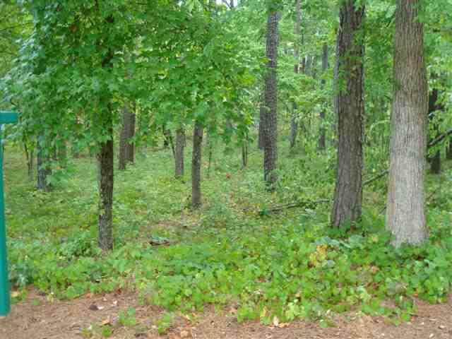136  Island Pine #136 Seneca, SC 29672