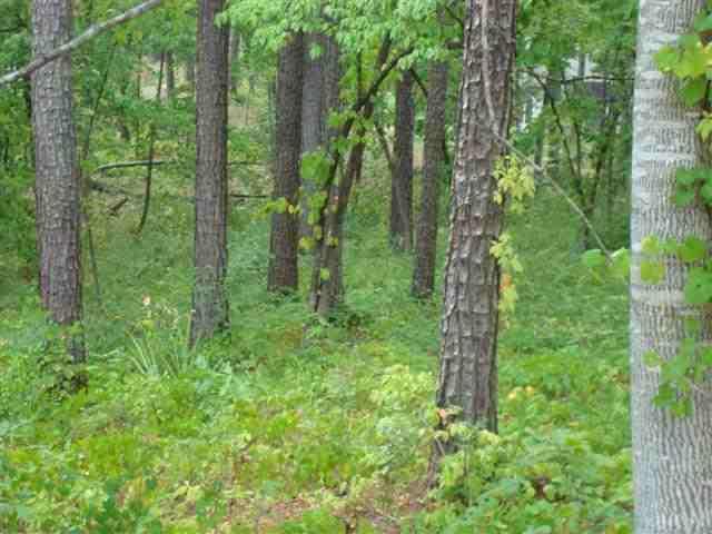 136 Island Pine Seneca, SC 29672