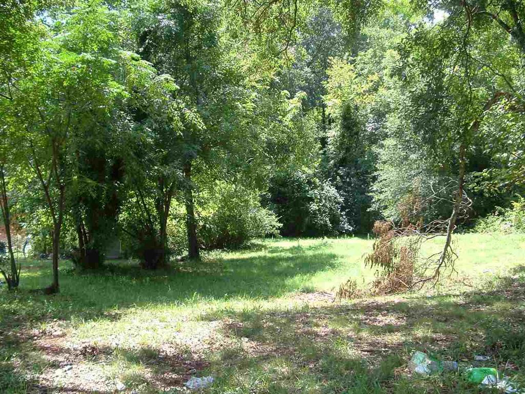 Boling Circle #lot 137 Greenville, SC 29609