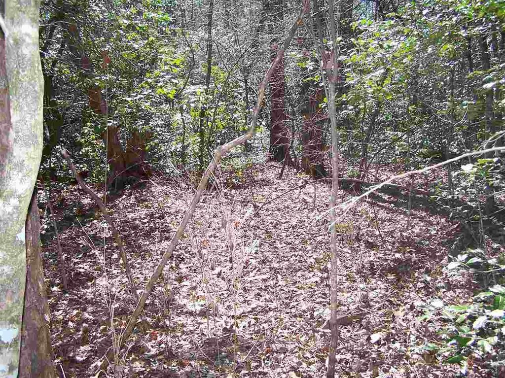 2  Bonner #2 Mountain Rest, SC 29664