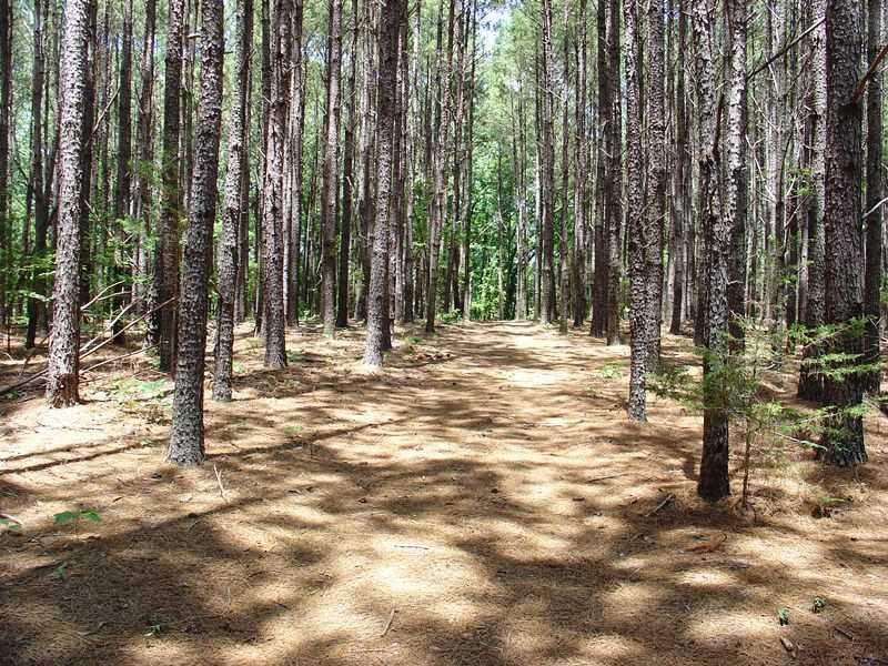 Tranquility Lane Hartwell, SC 30643