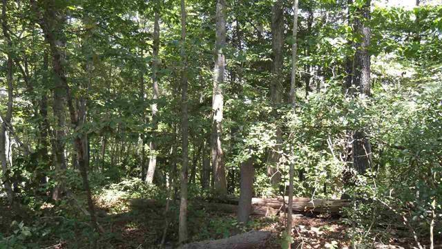 1 Tammerick Trail Fairplay, SC 29643