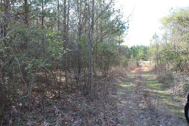 Durham Road #tract A Tract B Fairplay, SC 29643