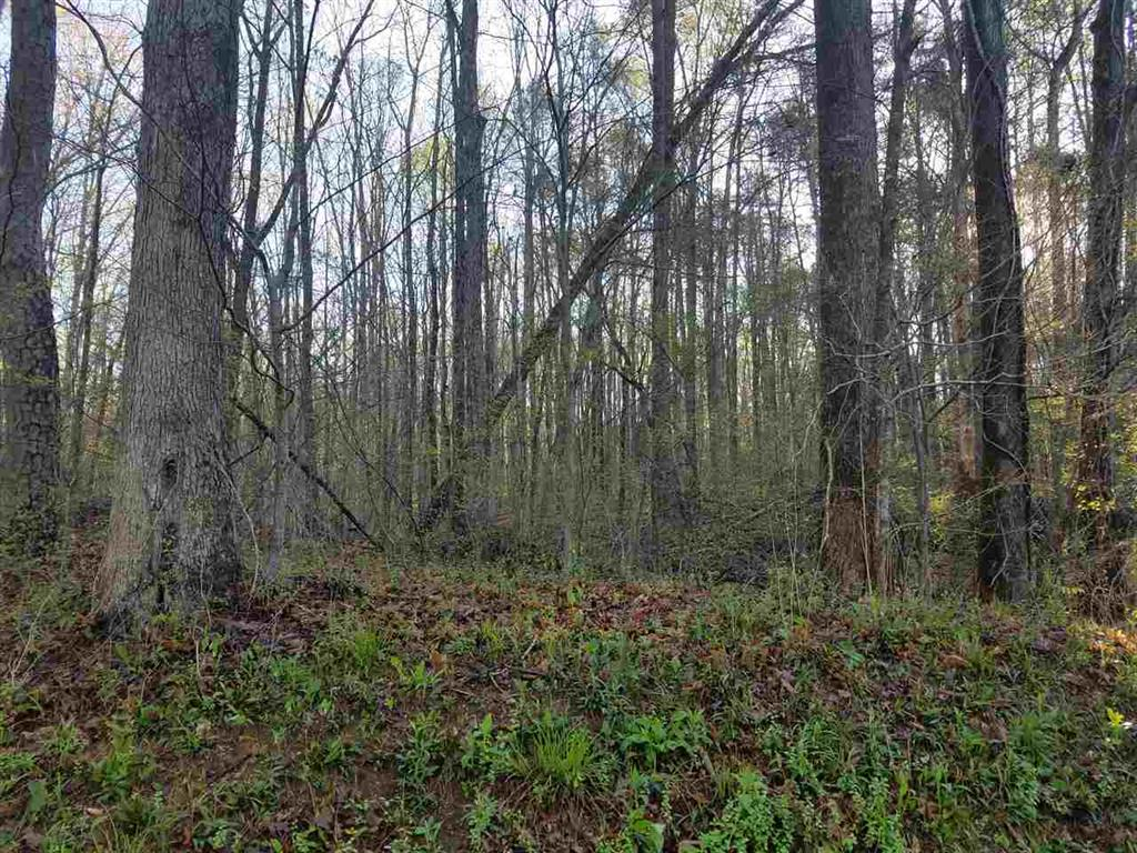 Section A, Lot 209 Dr. Johns Road Westminster, SC 29693