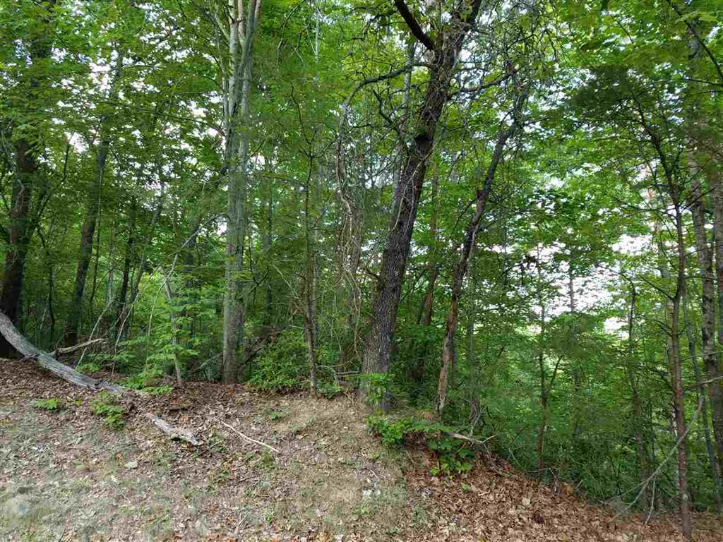 602 Whispering Falls Drive #lot 39 Rock Of Jocassee Pickens, SC 29671