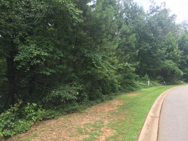14 Waterford Ridge #lot 14 Willow Wood Ct Seneca, SC 29672