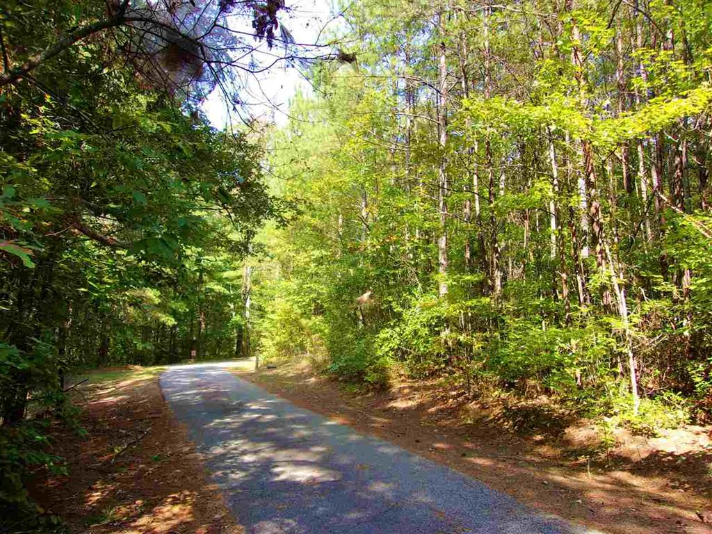 The Bear Boulevard Tamassee, SC 29686