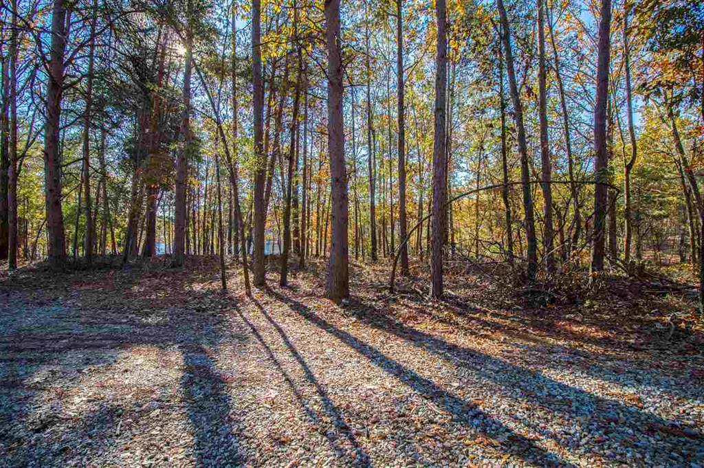 Freedom Trail Hartwell, SC 30643