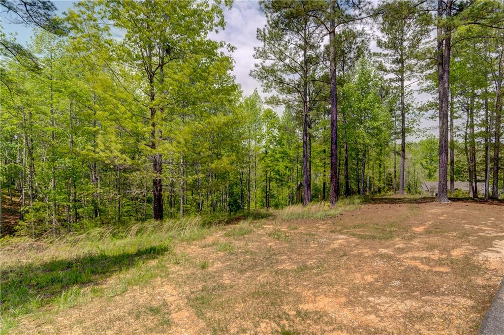 248 Piney Woods Trail Six Mile, SC 29682