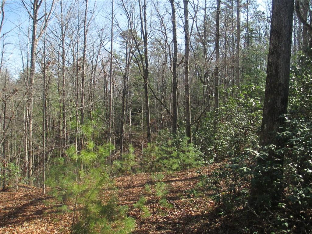 250 Peace Trail Mountain Rest, SC 29664