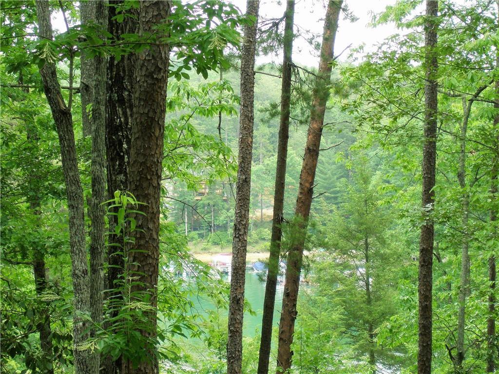 455 Shimmering Water Lane #kfn-s-004 Salem, SC 29676