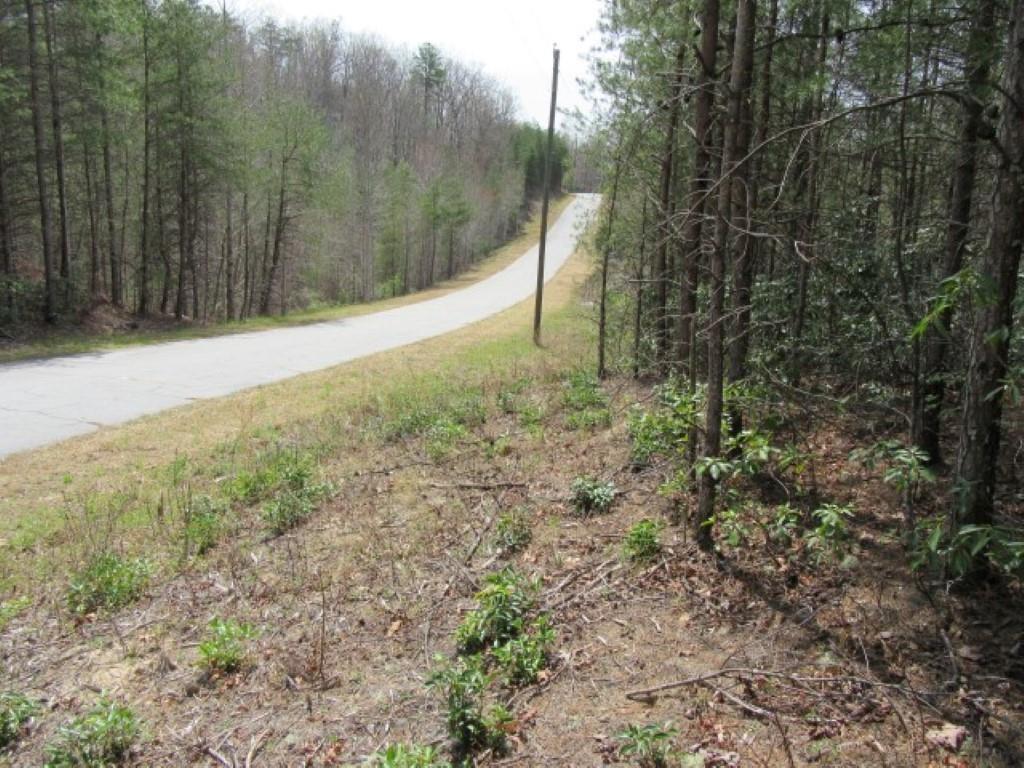 109 Matthews Creek Lane Cleveland, SC 29635