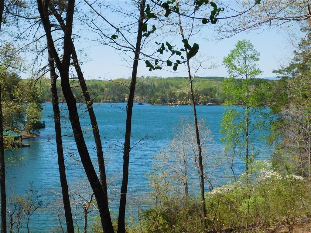141 Bright Water Trail #cks-ph1-071 Six Mile, SC 29682