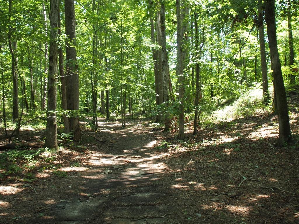 Lakeview Drive #lot 4 5 Fairplay, SC 29643