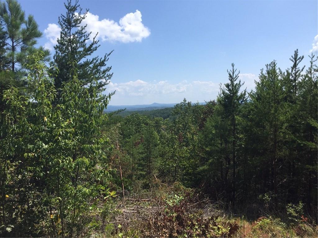 11 Jocassee Ridge Way Salem, SC 29676