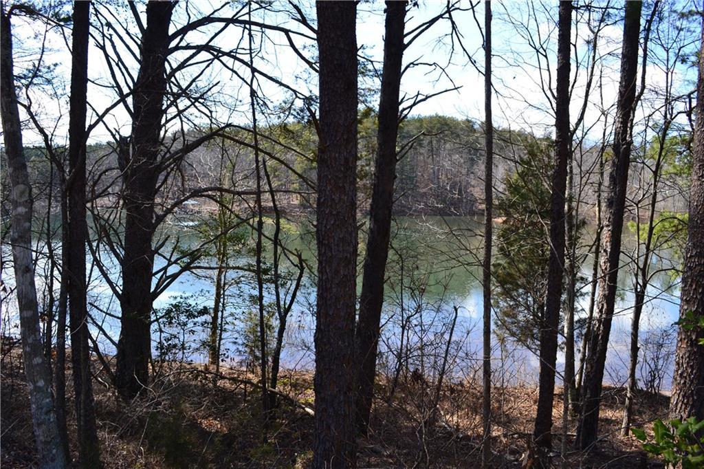 128 Island Water Drive Six Mile, SC 29682