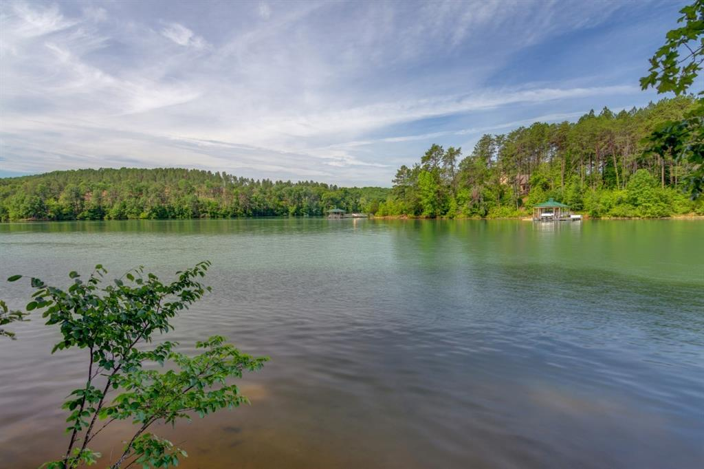 132 Tranquil Cove Six Mile, SC 29682