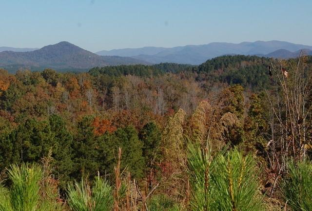 4 Hickory Springs Way Six Mile, SC 29682